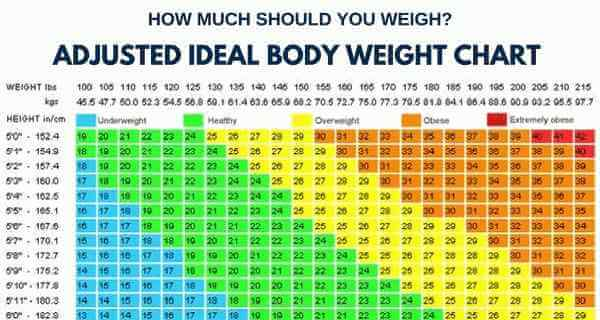 bmi adjusted for body fat percentage